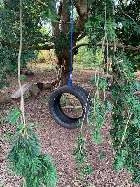 Swanbourne tyre swing in the allotment