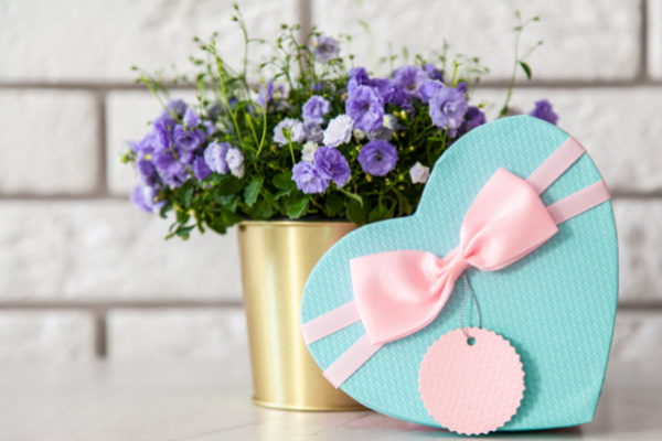 love heart gift box infront of pot of flowers that are purple